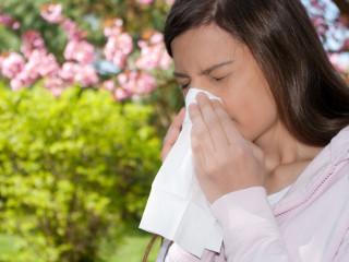 Причины аллергического насморка и особенности его проявления