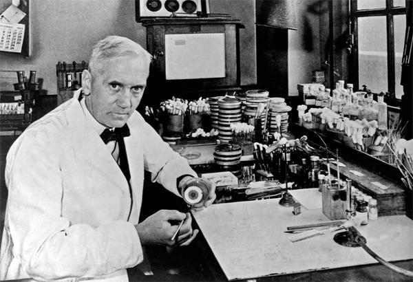 Как работают препараты ряда пенициллинов?