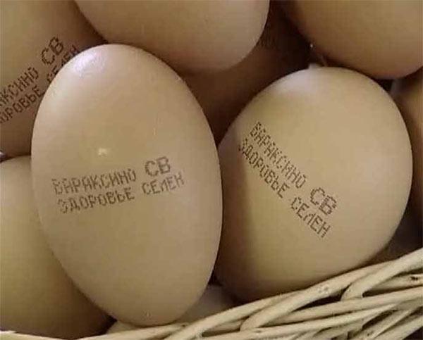 Маркировка на яйце
