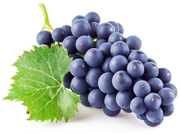 Чем полезен виноградный сок?