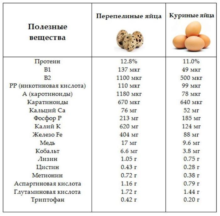 Таблица сравнения куриных и перепелиных яиц