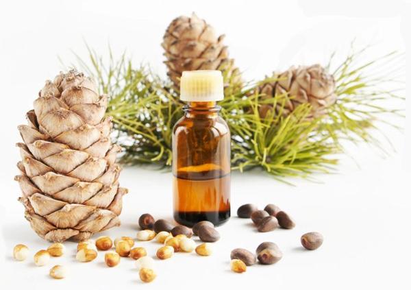 Лечение гастрита кедровым маслом