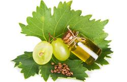 Масло виноградных косточек для ухода за кожей