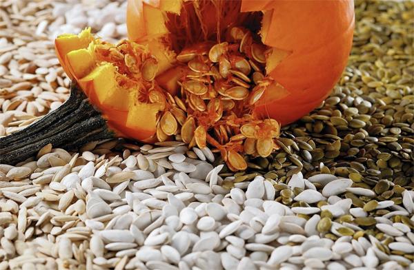 Чем полезны тыквенные семена?