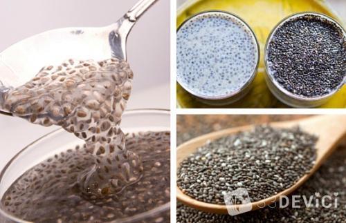 Семена чиа: специфика ухода и польза