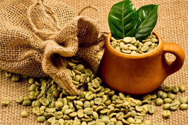 Уникальные свойства зеленого кофе