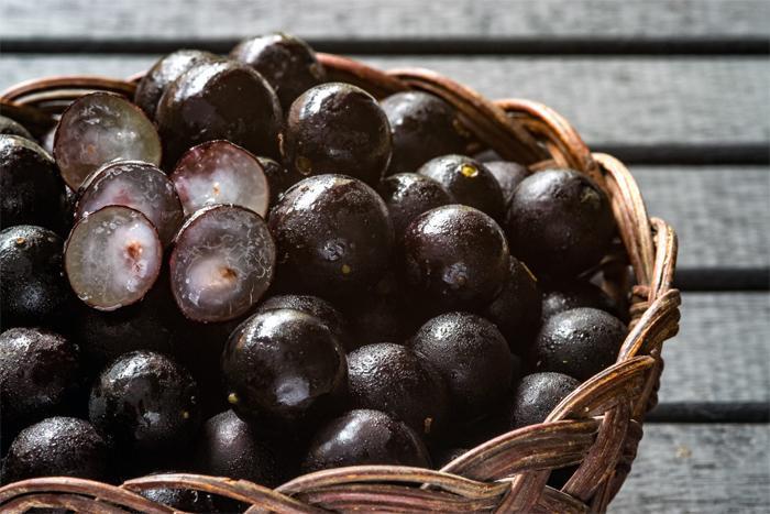 Что нужно знать о ягодах асаи?