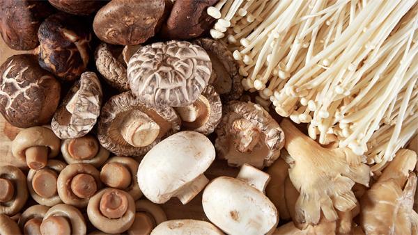 Vitapteka.ru — лечебные грибы в любых формах выпуска