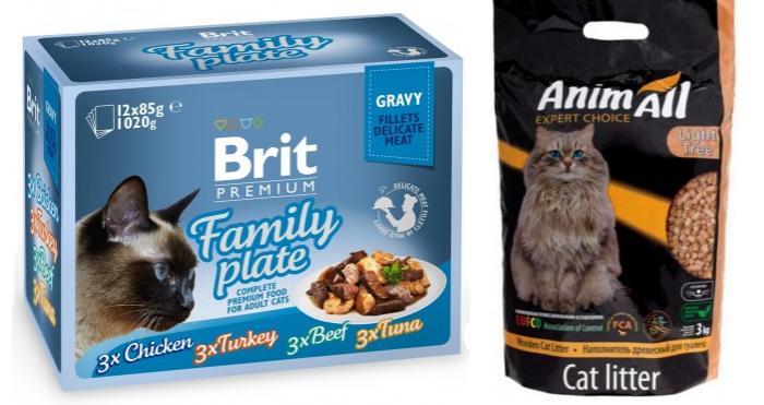 Правильное питание для домашней кошки